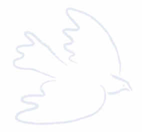 White Dove Logo